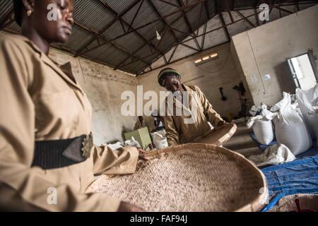Rice mill in Sierra Leone - Stock Image
