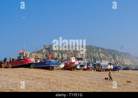 Hastings, East Sussex, Fishing boats on the Old Town Stade fishing boat beach. With more than 25 boats Hastings has the largest beach-launched commercial fishing fleet in Europe. - Stock Image
