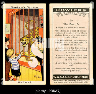 Cigarette card: Churchman's Cigarettes 'Howlers' series (1937) - The Zoo - Stock Image
