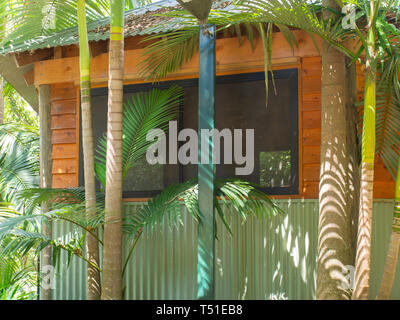 A Hut In Amongst The Rain Forest Trees - Stock Image