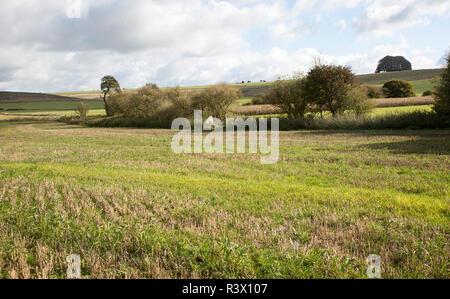 Falkner's Circle remains of prehistoric stone circle, near Avebury, Wiltshire, England, UK - Stock Image