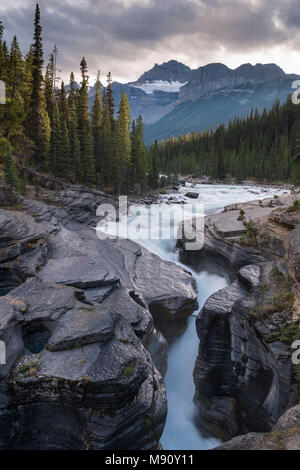 Mistaya Canyon off the Icefields Parkway in the Canadian Rockies, Alberta, Canada.  Autumn (September) 2017. - Stock Image