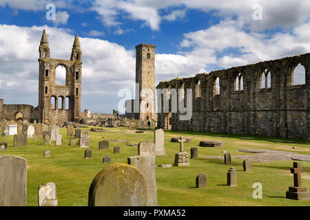 14th Century ruins of east tower and south wall of St Andrews Cathedral nave with 12th Century St Rules Tower St Andrews Fife Scotland UK - Stock Image