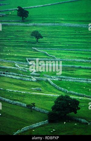 Cumbria, Lake Diustrict,UK. Dry stone walls. 2000 - Stock Image