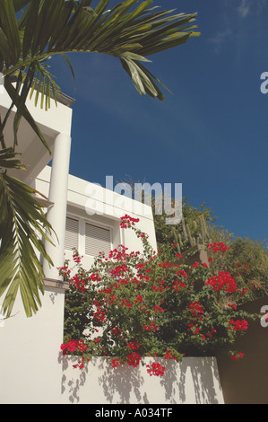 White villa with purple flowers - Stock Image