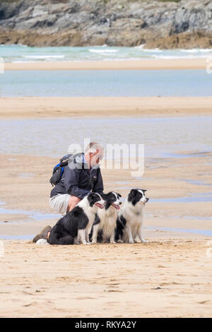 A man kneeling with his three Border Collie dogs on Crantock Beach in Newquay in Cornwall. - Stock Image