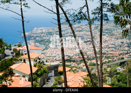 Funchal, the capital of Madeira, seen from the Palheiro Estate residential area located high above the town.  - Stock Image