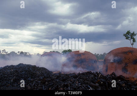 Production of vegetal charcoal to be used as fuel to produce pig iron - the intermediate product of smelting iron ore – increases Cerrado biome deforestation - Mato Grosso do Sul State, Mid-west Brazil. Modern steel mills and direct-reduction iron plants transfer the molten iron to a ladle for immediate use in the steel making furnaces. - Stock Image