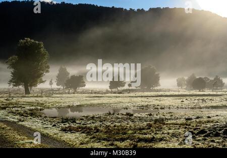 Misty Landscape - Stock Image