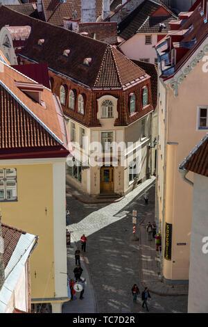 View of Tallinn Old Town from Kohtuotsa Overlook - Stock Image