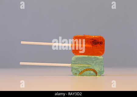 Lollypop with insect; Cricket - Stock Image