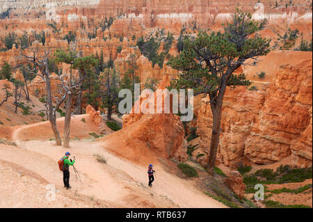 Couple hiking in Bryce Canyon National Park, Utah, USA. - Stock Image