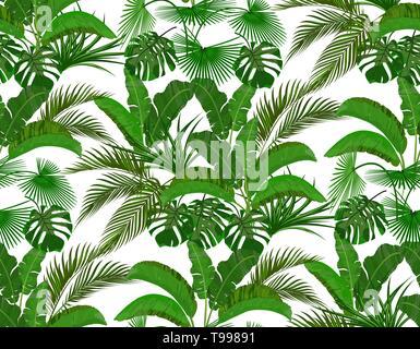 Green tropical leaves of banana, coconut, monstera and ogawa. Seamless illustration - Stock Image