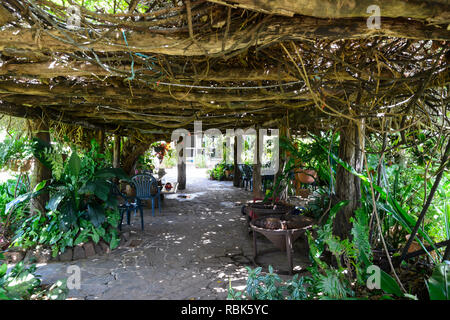 Shaded terrace at Woodleigh Cattle Station, near Ravenshoe, Atherton Tablelands, Far North Queensland, QLD, FNQ, Australia - Stock Image