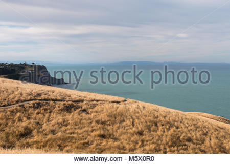 Walking trail Godley Head, Christchurch, New Zealand - Stock Image