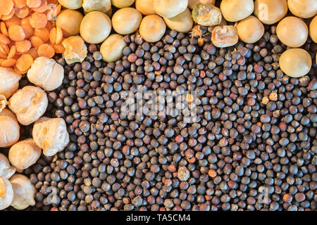 Various sized seeds and peas ingredients - Stock Image