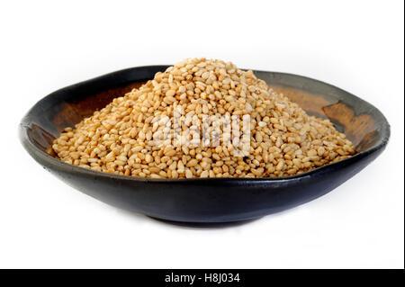roasted sesame seeds - Stock Image