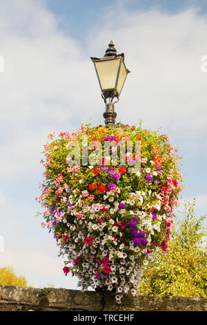 Image of a summer blooming flower garland surrounding a lamp post. - Stock Image