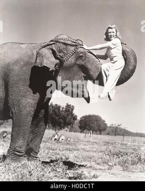 Woman sitting on elephant's trunk - Stock Image