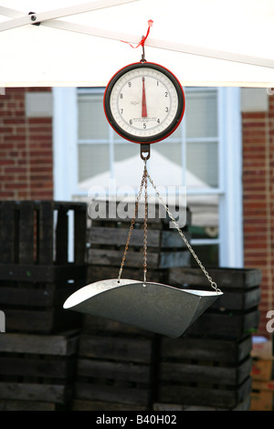 Hanging scale at a farmers' market - Stock Image