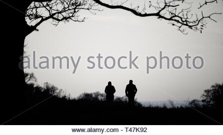 couple walking through richmond park near dusk, in West London - Stock Image