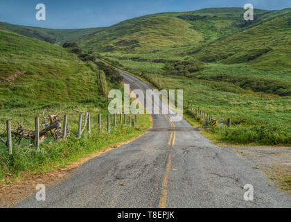 Pierce Point Road in Point Reyes National seashore on a spring day featuring green grass and cloudless sky - Stock Image