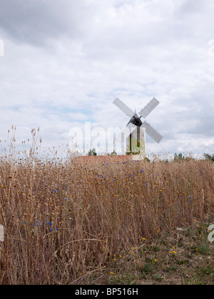 Windmill at La Chapelle-Saint-Florent, Loire, France. South West of Angers. This is a restored working mill. - Stock Image