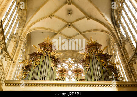 Czech Republic, Prague. Organ and ceiling of St. Vitus Cathedral. Credit as: Wendy Kaveney / Jaynes Gallery / DanitaDelimont.com - Stock Image
