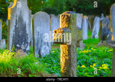 Selective focus, golden sunlight shining on a cemetery in Hampstead of London - Stock Image