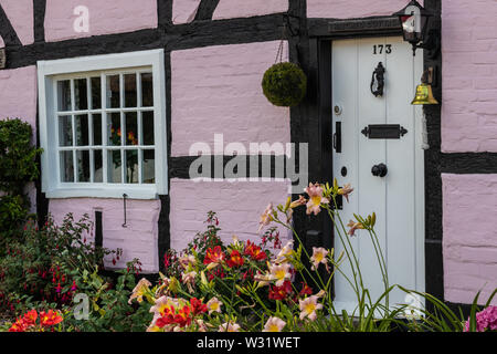 The entrance door to a pink traditional English cottage and garden - Stock Image