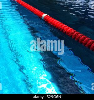 Swimming pool with lane markers - Stock Image