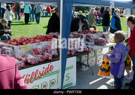 Two Rivers, Wisconsin USA, 13th Oct, 2018. Two Rivers Annual Autumn Applefest provides an opportunity to purchase a wide variety of apples from local orchards.  Credit: Jerome Wilson/Alamy Live News - Stock Image