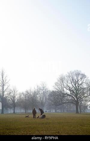 Morning Dog Walking on Clapham Common, London UK - Stock Image