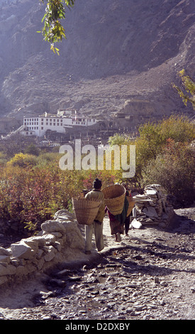 People using head bands to carry baskets of apples into Marpha in Kali Gandaki valley on Annapurna circuit Himalayas - Stock Image