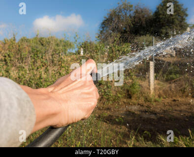 Hand with hose watering garden. - Stock Image