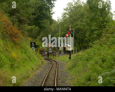 Rheidol Valley Railway, coming out of Aberffrwd Station - Stock Image