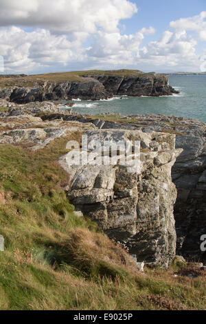 The Wales Coastal Path in North Wales. Picturesque view of the coastal path on the south west coast of Anglesey' - Stock Image