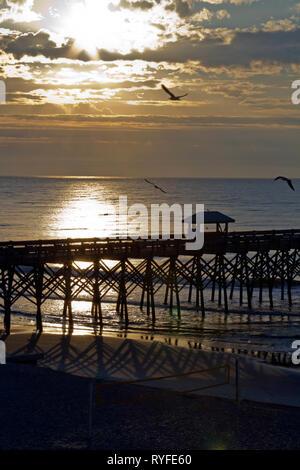 Silhouetted pier on Folly Beach, South Carolina at sunrise as sea birds wheel around the sky - Stock Image