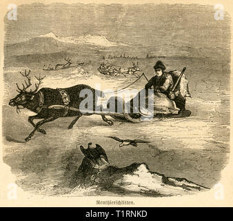 Finland, reindeer sledge, image from: 'Das heutige Russland' (Russia today), published by H.v. Lankenau and L.v.d. Oelsnitz, publishing house Otto Spamer, Leipzig, 1876. , Additional-Rights-Clearance-Info-Not-Available - Stock Image