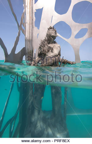 Statue of the Coralarium in Maldives - Stock Image