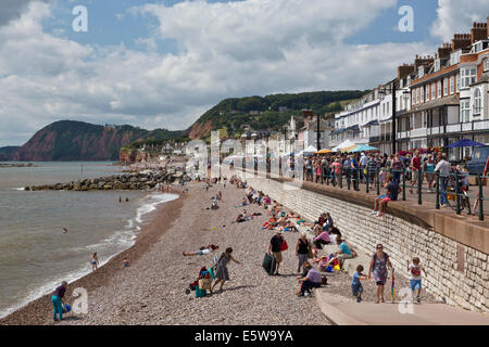 Sea front and beach at Sidmouth during folk festival 2014. - Stock Image