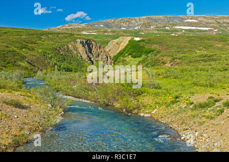 Canada, British Columbia. Landscape with stream. - Stock Image