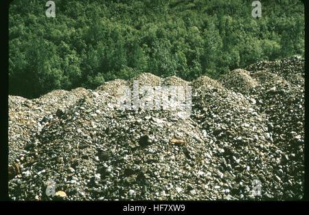 Gold dredge tailing piles at Bonanza Creek; Yukon Territory, Canada. - Stock Image