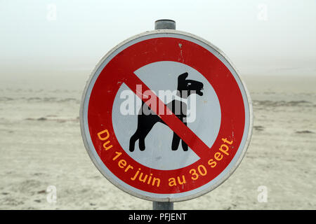 Dogs forbidden on beach sign (chiens interdit), Promenade de Penarth, Vrennit, Saint Pol de Leon, Finistere, Brittany, France - Stock Image