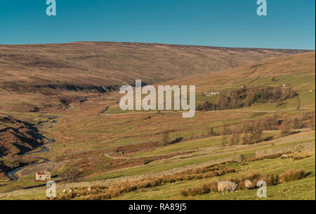 North Pennines AONB panoramic landscape, view towards Hudeshope Head, Teesdale in strong winter sunshine and a clear blue sky - Stock Image