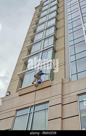 Window washer cleaning the outside windows of a high rise building from a low angle, in Montgomery Alabama, USA. - Stock Image