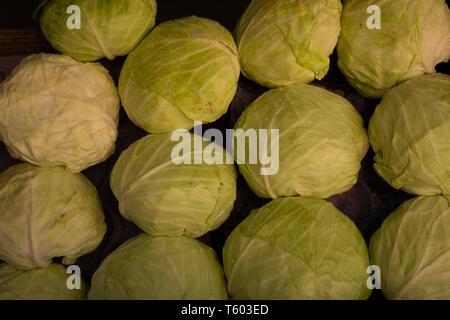 White cabbages put up for sale in a greengrocer's. - Stock Image