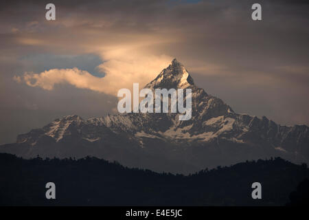 Nepal, Pokhara, Annapurna Range, Machhapuchchhre, Fish Tail Mountain, in afternoon light - Stock Image