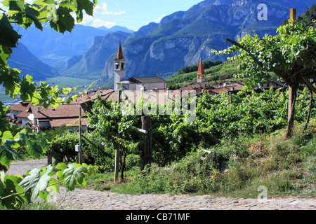 Vineyard in the small mountain village Faedo, in the Italian Alps. - Stock Image