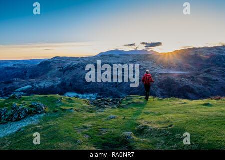 A walker descending Helm Crag at sunset, Grasmere, Lake District, Cumbria - Stock Image